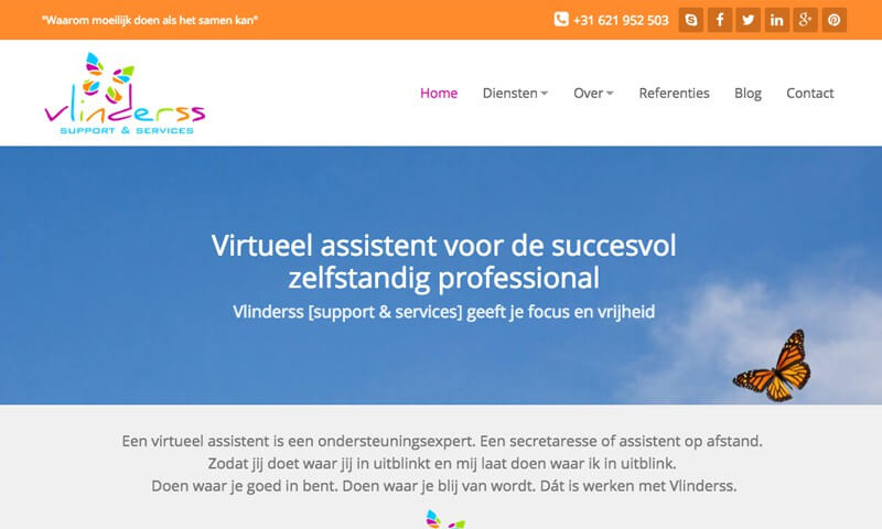 Vlinderss website